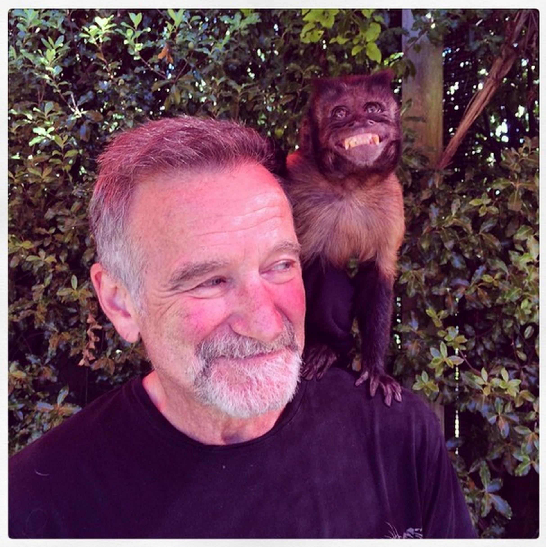 Robin Williams depression